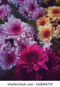 Blooming colorful flower in vintage style.