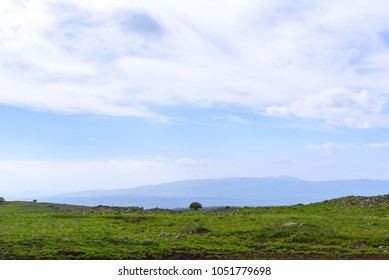Blooming fields in the Golan Heights in spring, Israel