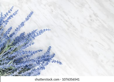 Blooming lavender on marble background with copy space on the right.
