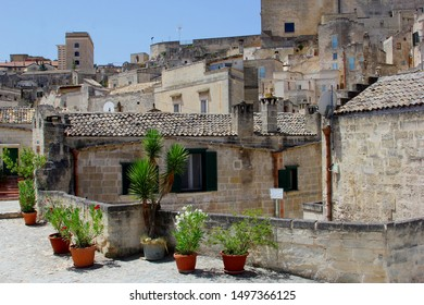 Blooming Nerium Oleander flowers in terra cotta pots and ancient houses, Sassi di Matera, Italy. Cultural capital of Europe 2019