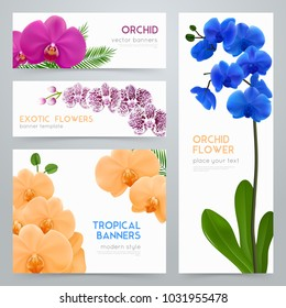 Blooming orchid plants 4 tropical botanic banners collection with exotic colorful flowers realistic isolated  illustration