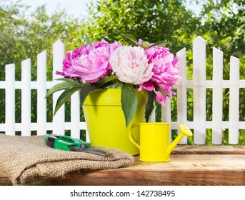 blooming pink peonies and garden equipment