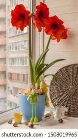 Blooming red Hippeastrum, Easter rabbits and eggs on the window