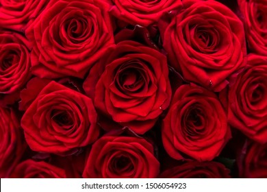 Blooming rose, flower blossom and Valentines Day gift concept - Gourgeous luxury bouquet of red roses, flowers in bloom as floral holiday background