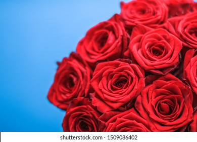 Blooming rose, flower blossom and Valentines Day present concept - Luxury bouquet of red roses on blue background, flowers as a holiday gift