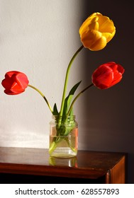Blooming tulips in a glass jar of water