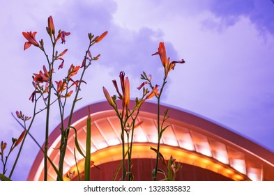 Blooms Before The House of the World's Cultures