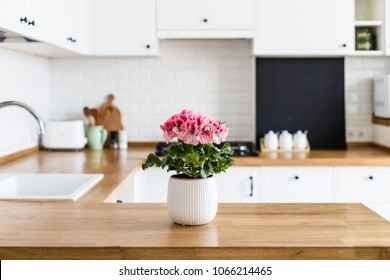 Blossom geranium in a flowerpot on a white u-shaped kitchen table. White ceramic brick wall background. House plants