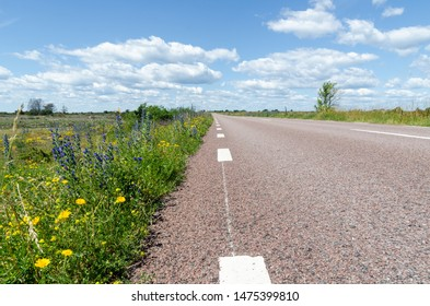 Blossom road side in a low perspective image from the swedish island of sun and wind Oland