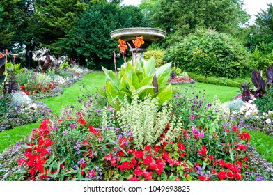 Blossoming colorful flowerbeds in summer city park