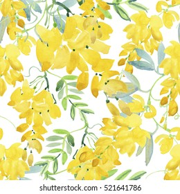 Blossoming yellow acacia or caragana tree. Seamless vintage pattern, yellow flowers in watercolor. Mimosa, acacia and other plants on a branch. Sunny watercolor sketch style seamless pattern