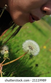 Blowing the Dandelion