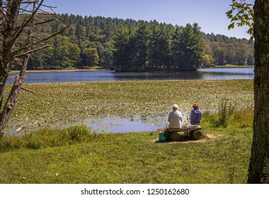 BLOWING ROCK, NC, USA-8/23/18: Two senior women sit on a log bench facing Bass Lake, with water lilies over much of the lake.