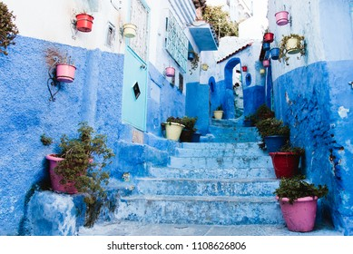 Blue Alley in Medina with Flower Pots, Chefchaouen, Morocco