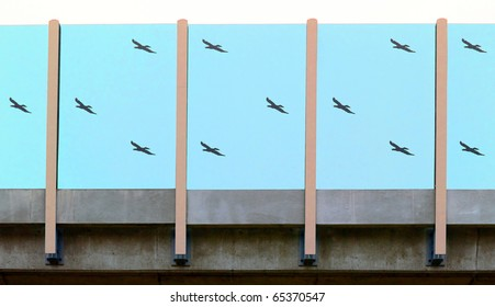 Blue anti-noise wall with silhouettes of birds