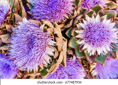 Blue artichoke flowers at the farmers market