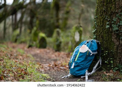 Blue backpack of a pilgrim, leaning against a tree in the middle of a path, with a hanging shell, symbol of the pilgrim, in a green forest. Camino de Santiago