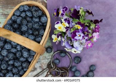 Blue berries in vintage basket, violet pansies, purple cloth on aged, weathered stool, daylight