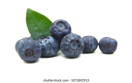 Blue berry on white background