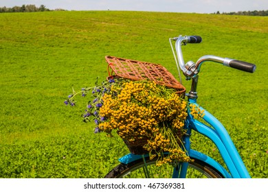 Blue bike with a basket. Bicycle with flowers on summer landscape background