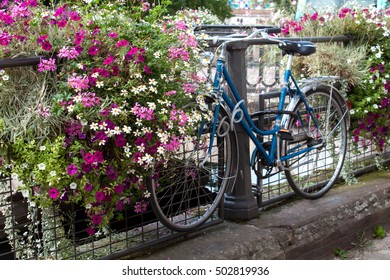 Blue bike on the bridge with beautiful colorful flowers