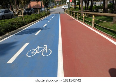 Blue bike path and red walking path located side by side in the forest