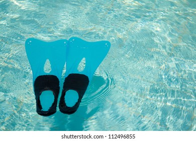 Blue and black fins in the turquoise swimming pool