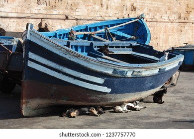Blue boats and resting cats in Essaouira port, Morocco