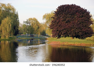 Blue bridge in a park with willows and geese swimming in water