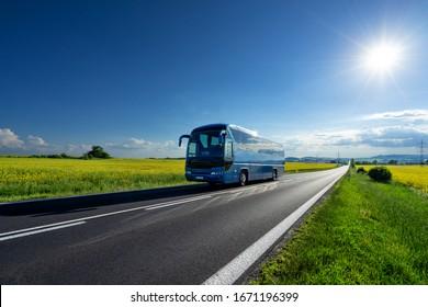 Blauer Bus auf der asphaltierten Straße zwischen den gelben blühenden Rapsfeldern unter strahlender Sonne in der ländlichen Landschaft