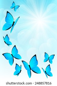 Blue butterflies on sunny sky background