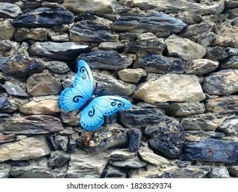 Blue butterfly hanging from a rustic stone wall. Complement to decorate the home. Butterfly of bright and beautiful color.