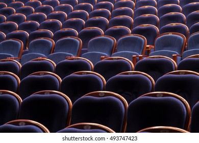 Blue chairs in the auditorium