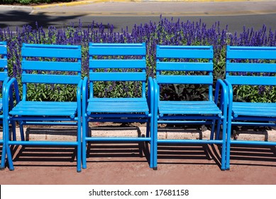 Blue chairs with lavender on the Croisette in Cannes