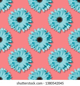 Blue Chamomile or gerbera seamless floral pattern. Summer flowers
