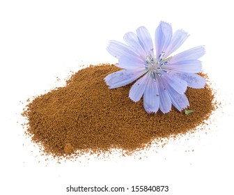 Blue chicory flower  and powder of instant chicory isolated on a white background.  Cichorium intybus.