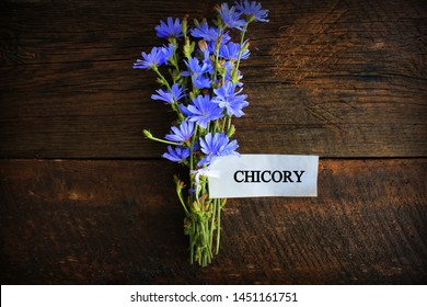 Blue Chicory Flowers, chicory wild flowers on wooden background with text. Flower of wild chicory endive . Cichorium intybus .