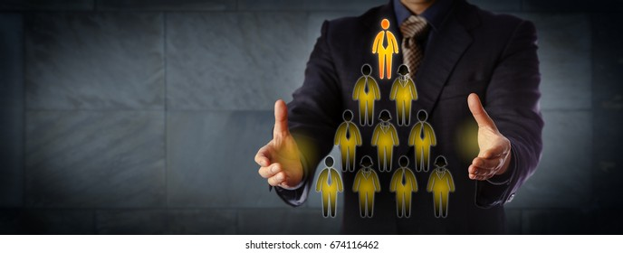 Blue chip chairman building hierarchical management structure. Business concept for corporate hierarchy, career success, multilevel network marketing, and leadership. Extra-wide for copy space.