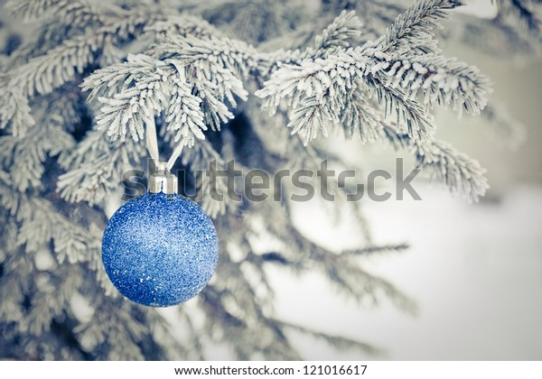 blue Christmas ball on a fur-trees covered with a snow