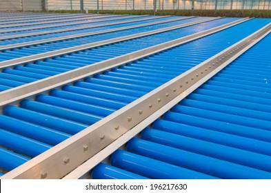 blue conveyor belt rollers in a greenhouse