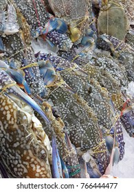 Blue Crab sell in the market
