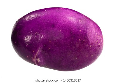 Blue Danube Potato (Solanum tuberosum), whole tuber, isolated
