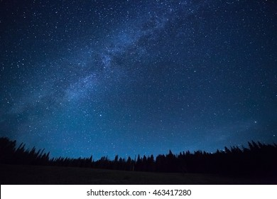 Blue dark night sky with many stars above field of trees. Yellowstone park. Milkyway cosmos background - Shutterstock ID 463417280