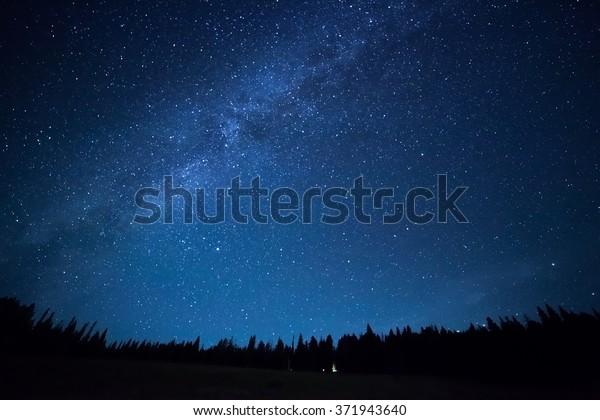 Blauer dunkler Nachthimmel mit vielen Sternen über dem Baumfeld. Gelbsteinpark. Milchstraße, Kosmoshintergrund