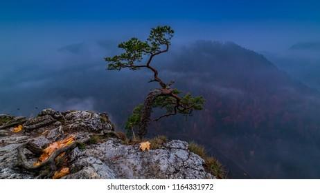 Blue dawn at Sokolica peak in Pieniny mountains, Poland