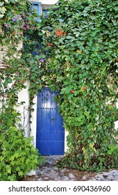blue door in Ibiza with Green ivy trees climbing the wall, house facade white in historic center of Ibiza, house of ibiza, Spain., , cobbled streets and steep,narrow streets