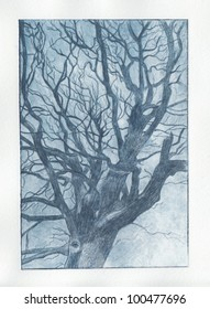 Blue dry point tree