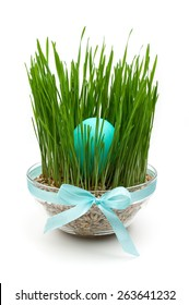 blue easter egg in grass decoration isolated on white