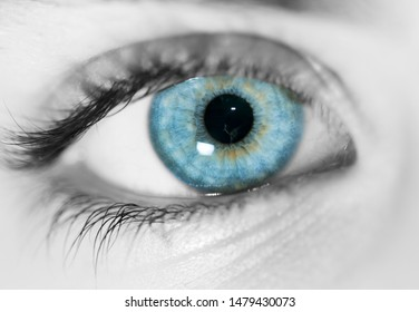 blue eye in black and white