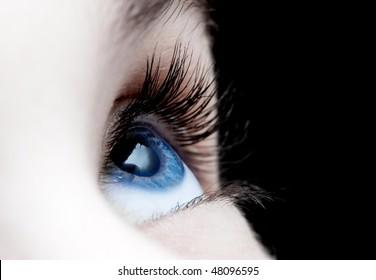Blue eye closeup of a girl